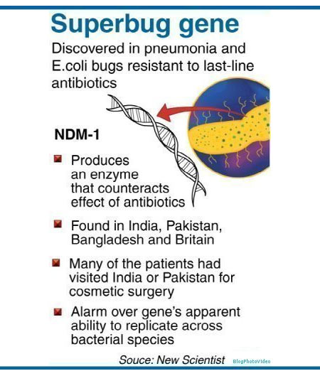 Superbug - Infographic