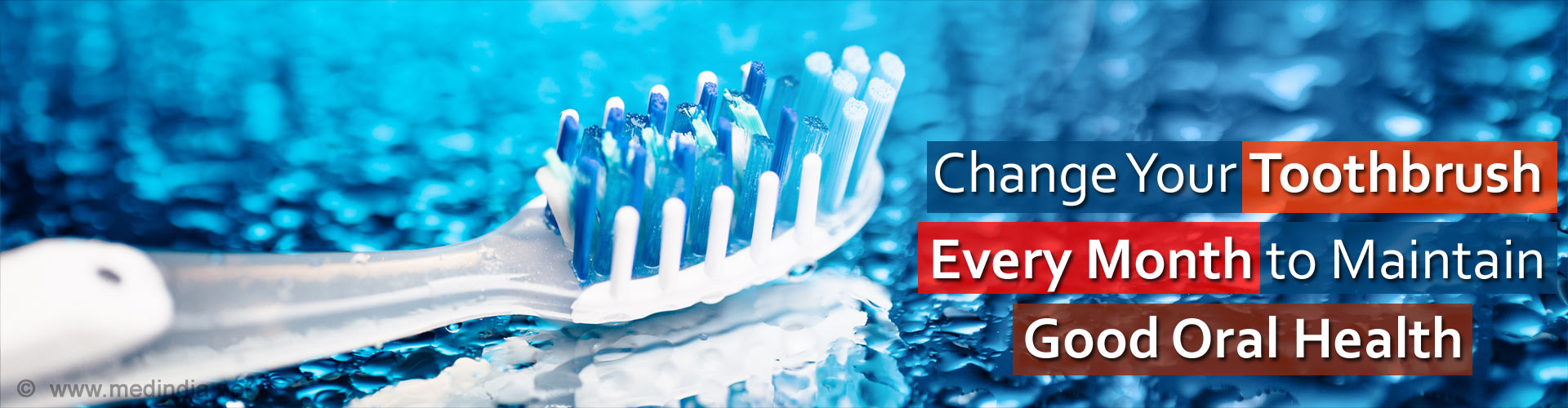 Teeth Chart- Types of Teeth, Functions and Location