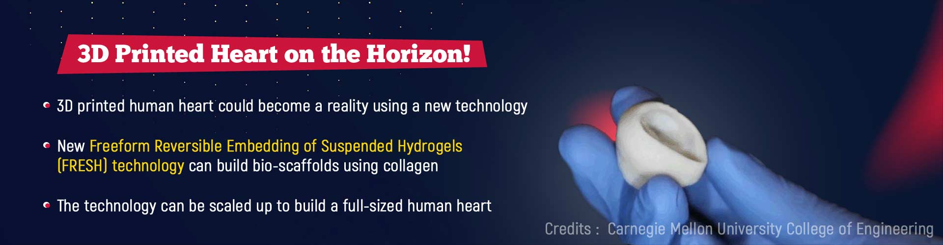 3D printed heart on the horizon. 3D printed human heart could become a reality using a new technology. New Freeform Reversible Embedding of Suspended Hydrogels (FRESH) technology can build bio-scaffolds using collagen. The technology can be scaled to build a full-sized human heart.