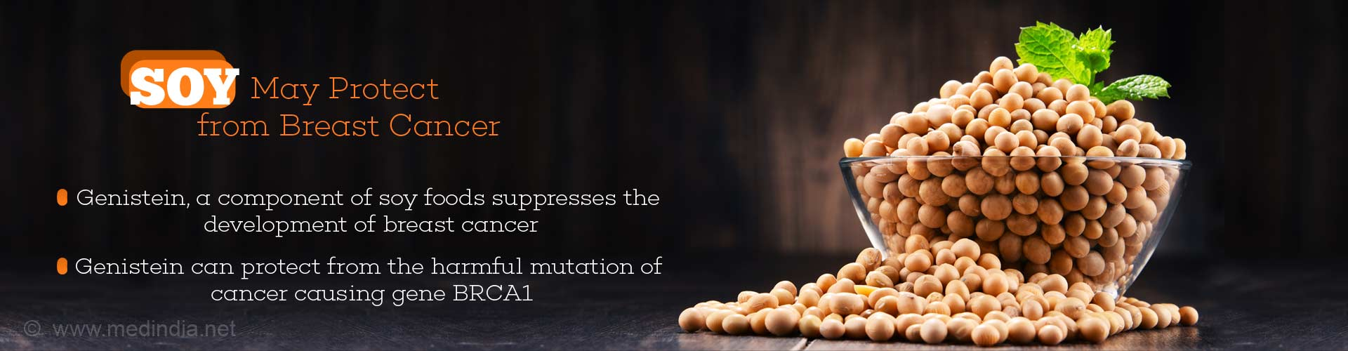 Soy may protect from breast cancer - genistein, a component of soy foods suppresses the development of breast cancer - genistein can protect from the harmful mutation of cancer causing gene BRCA1