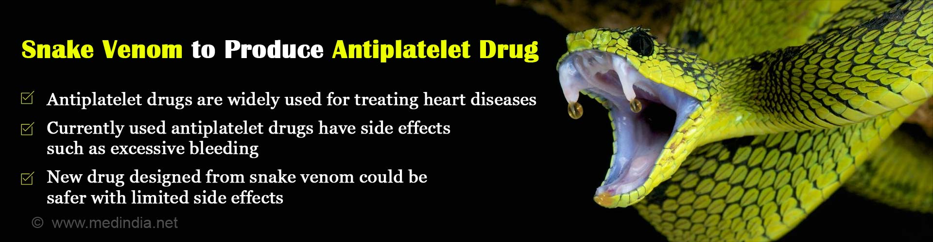 New, Safer Antiplatelet Drug from Snake Venom