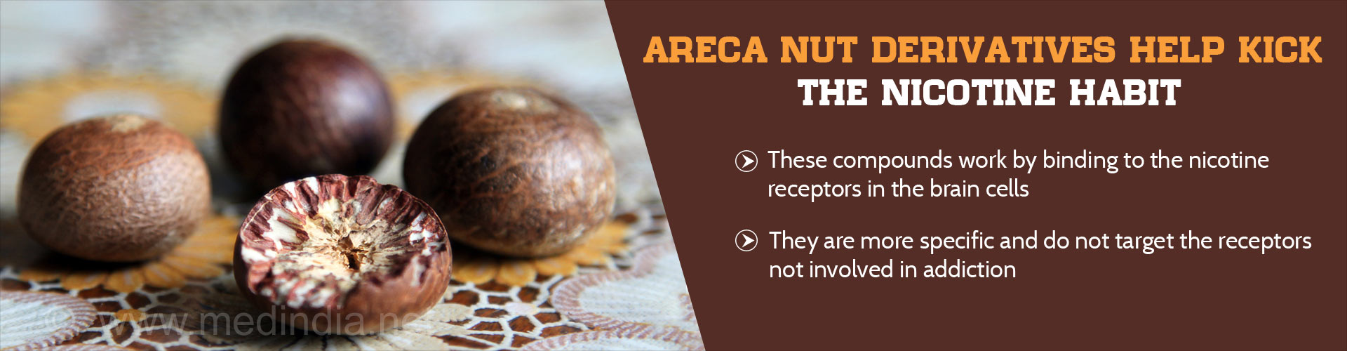 Areca Nut Derivatives Help Kick The Nicotine Habit