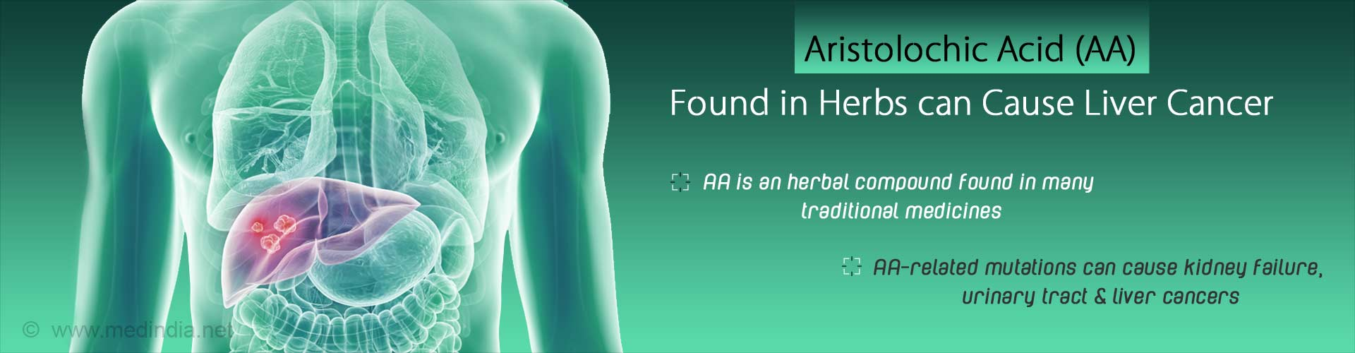 Herbal Remedies that Contain Aristolochic Acid Causes Liver Cancer