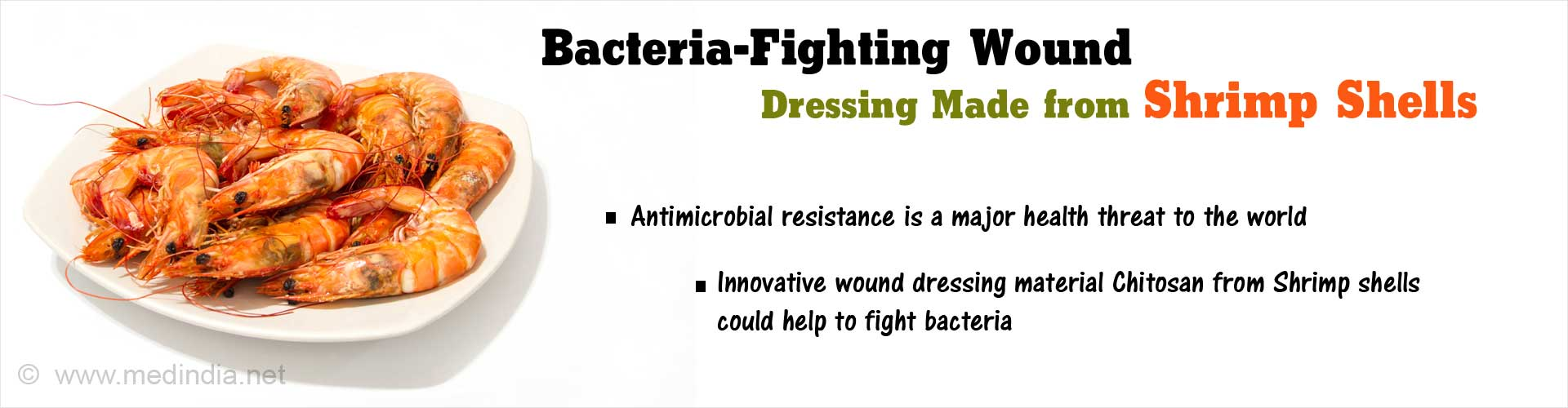 Innovative Wound Dressing From Shrimp Shells
