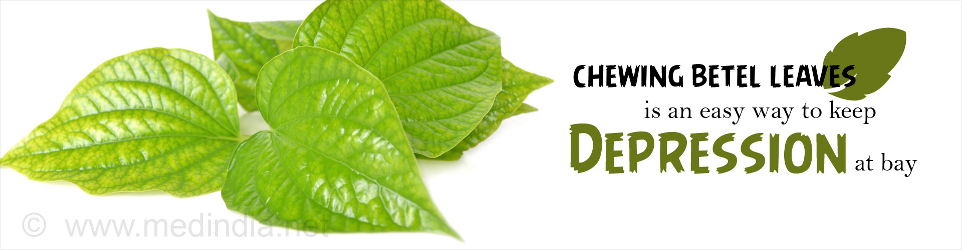 Chewing betel leaves is an easy way to keep depression at bay