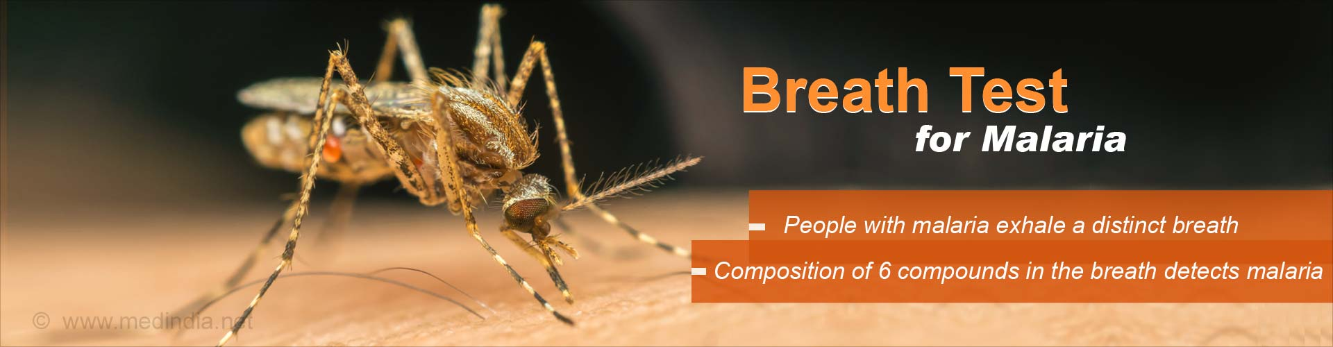 Breath-based Diagnostic Test to Determine Malarial Infection