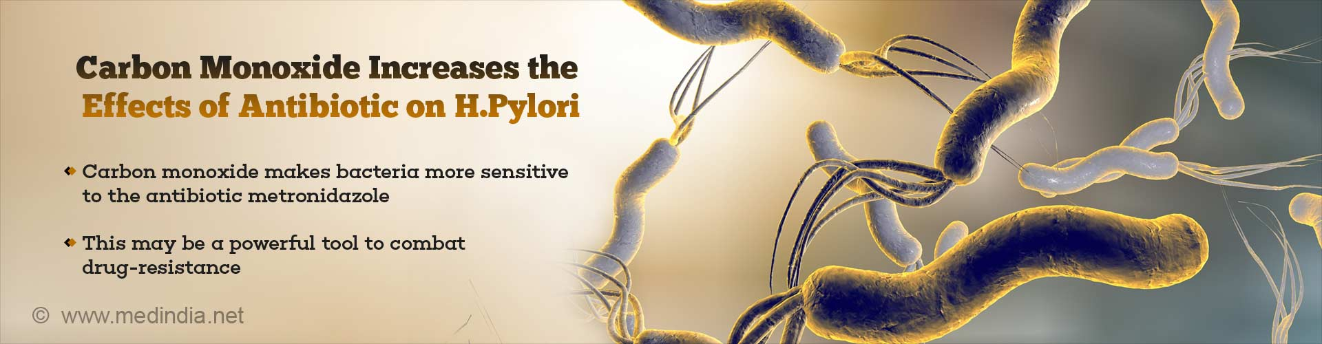 carbon monoxide increases the effects of antibiotic on H.Pylori