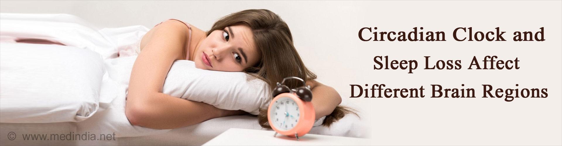 Circadian Clock and Sleep Loss Affect Different Brain Regions