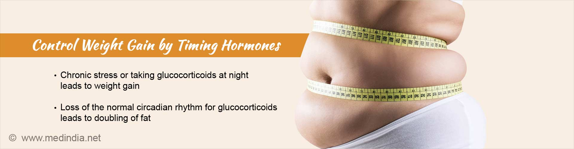 control weight gain by timing hormones - chronic stress or taking glucocorticoids at night leads to weight gain - loss of normal circadian rhythm for glucocorticoids leads to doubling of fat