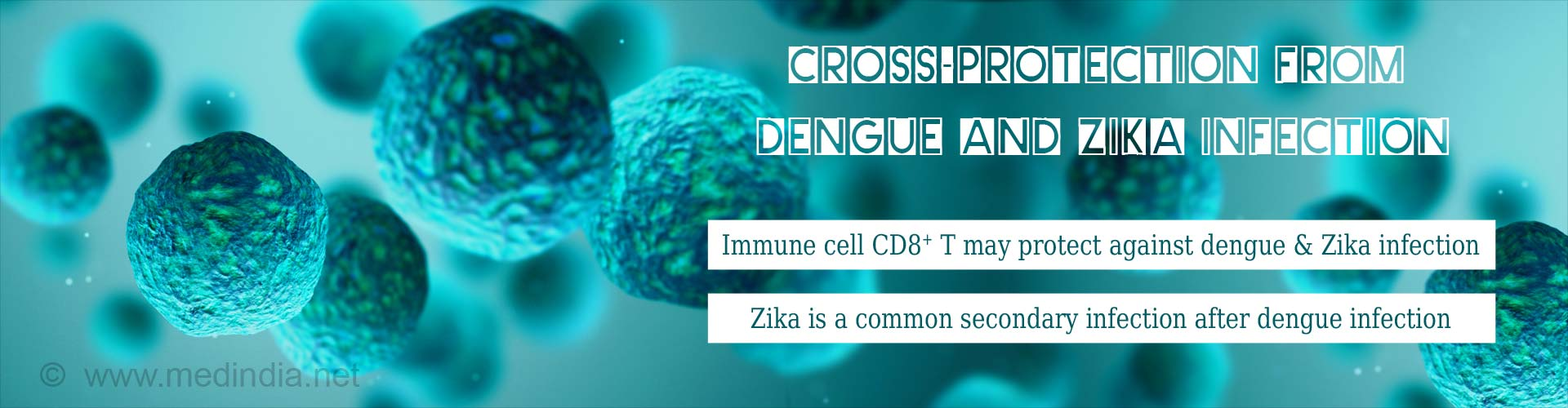 cross-protection from dengue and zika infection