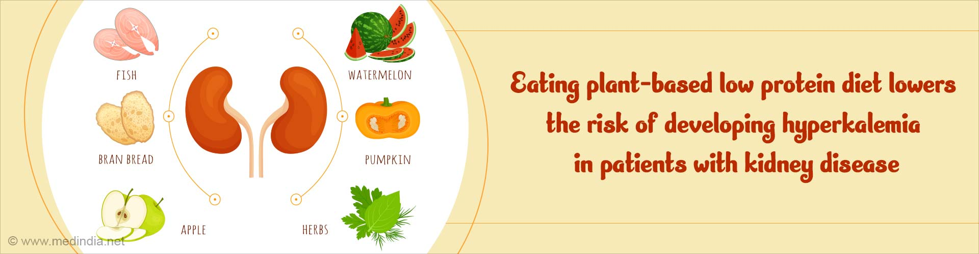 Plant-Based Diet is Not Linked to Hyperkalemia in CKD Patients
