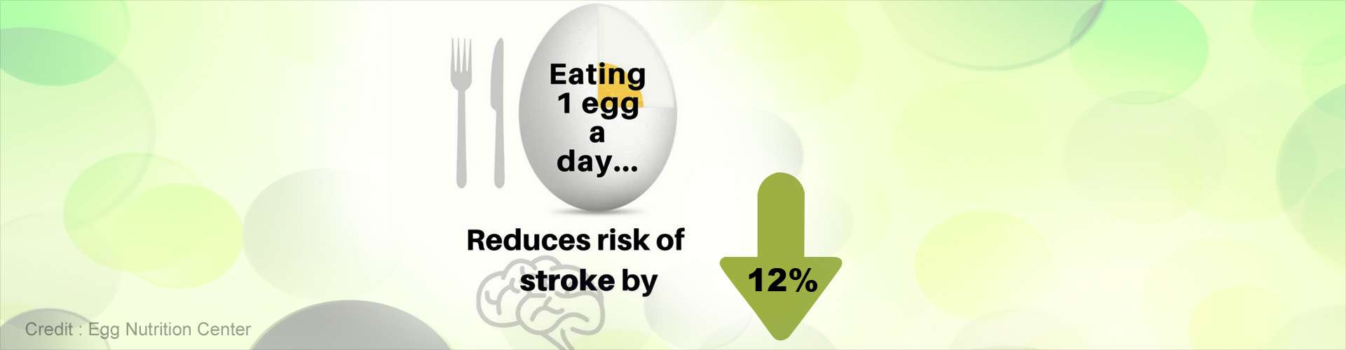 Daily Intake of Egg Reduces Stroke Risk by 12 Percent