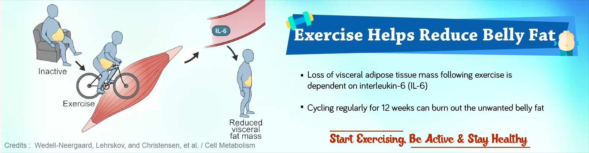 Exercise helps reduce belly fat. Loss of visceral adipose tissue mass following exercise is dependent on interleukin-6 (IL-6). Cycling regularly for 12 weeks can burn out the unwanted belly fat. Start exercising, be active and stay healthy.