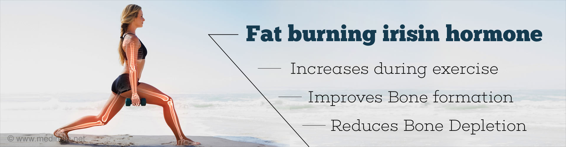 Fat burning irisin hormone