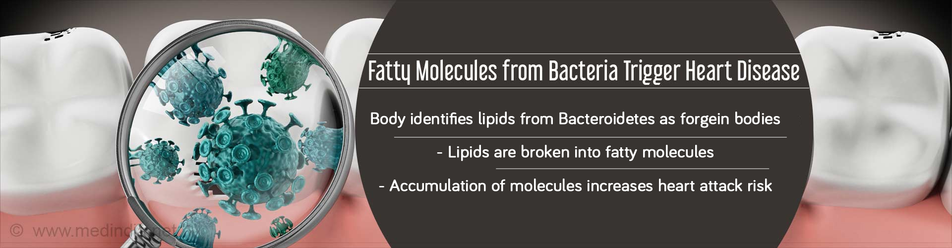 Fatty molecules from bacteria trigger heart disease