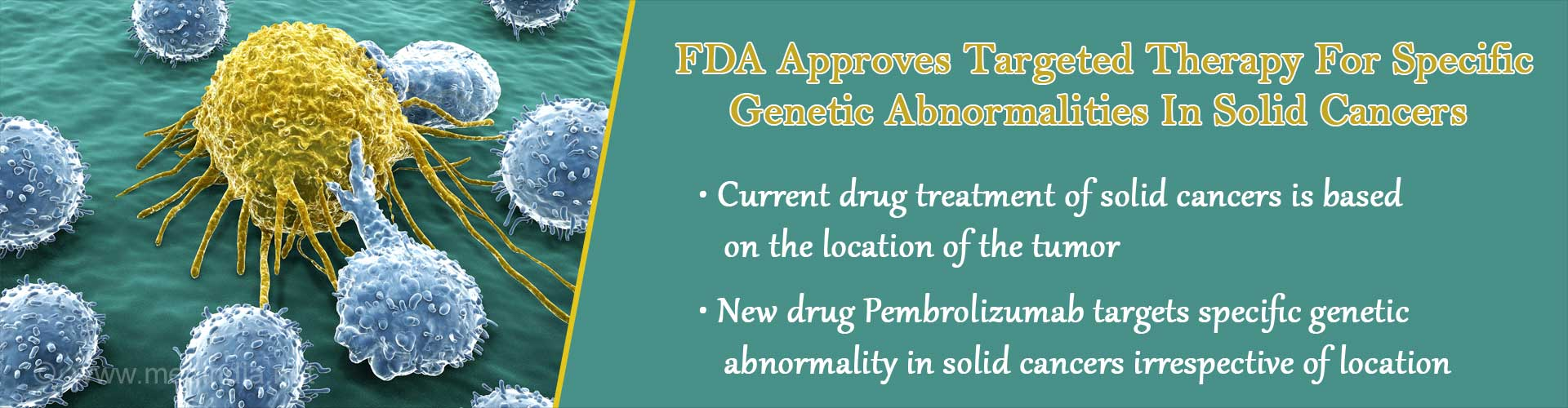 FDA approves targeted therapy for specific genetic abnormalities in solid cancers - Current drug treatment of solid cancers is based on the location of the tumor - New drug Prembrolizumab targets specific genetic abnormality in solid cancers irrespective of location
