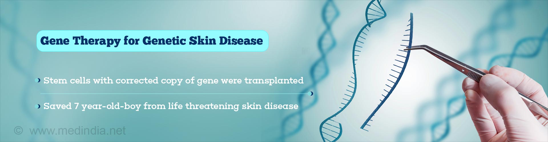 Gene Therapy For Genetic Skin Disease Using Epidermal Stem Cells