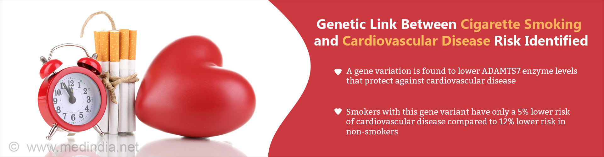 Genetic link between cigarette smoking and cardiovascular disease risk identified