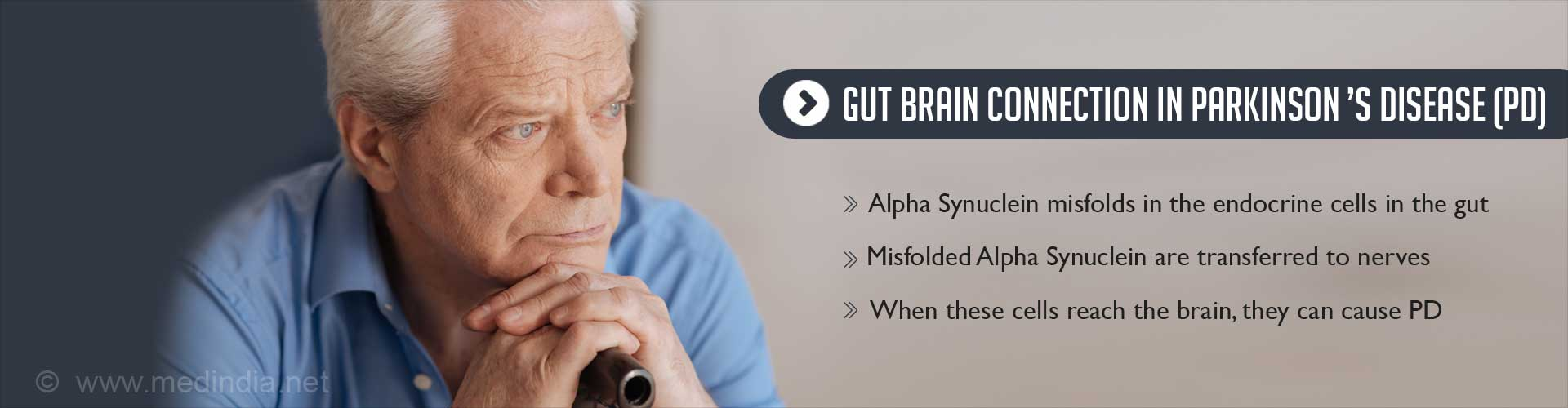 Toxic Proteins That Cause Parkinson's Disease Could Originate in the Gut