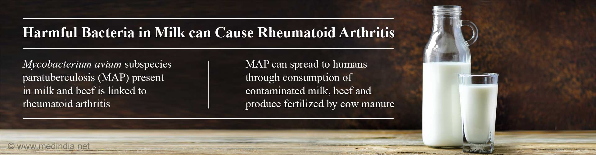 harmful bacteria in milk can cause rheumatoid arthritis