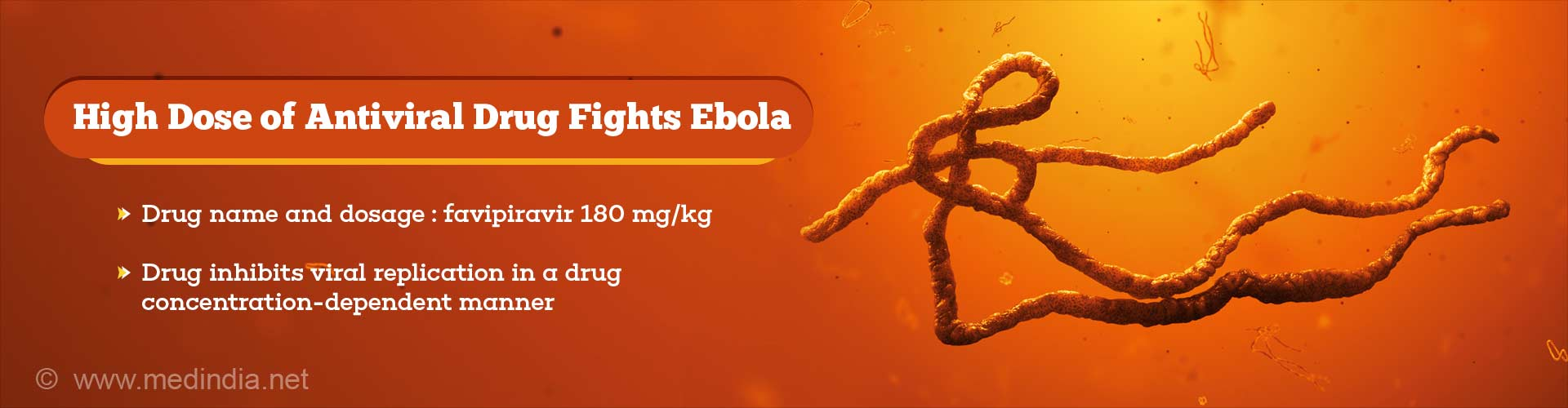 Ebola-Related Deaths Fell When Treated With High Dose of Antiviral Drug