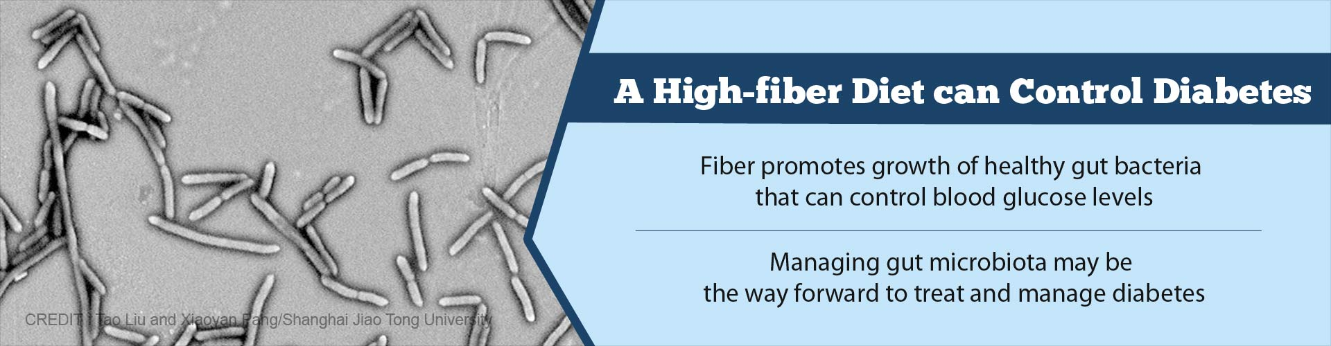High-fiber Diet may Help Treat Type 2 Diabetes
