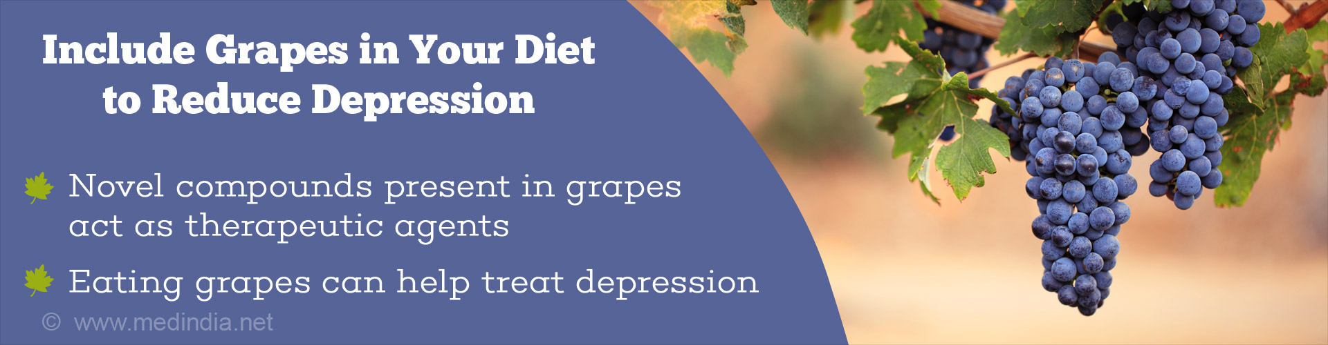 include grapes in your diet to reduce depression - novel compounds present in grapes act as therapeutic agents - eating grapes can help treat depression