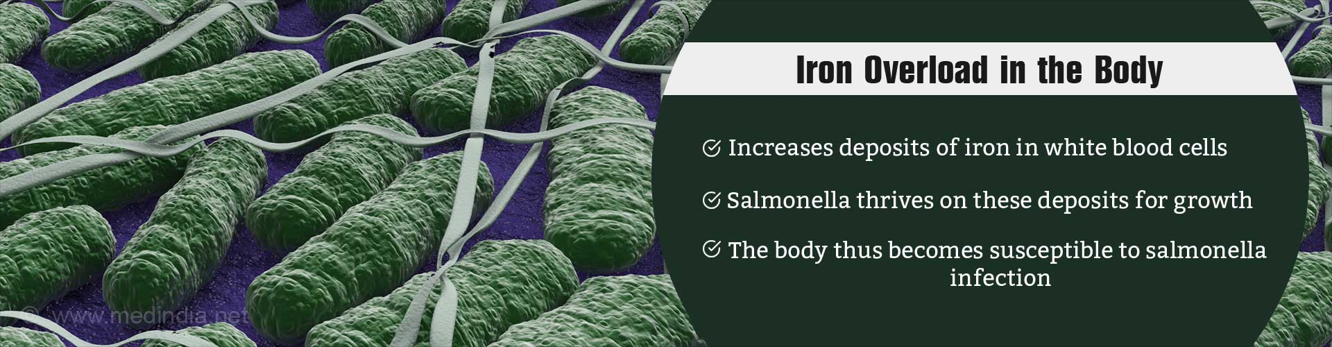 Avoid Iron Overloading, Avert Risk of Salmonella Infection