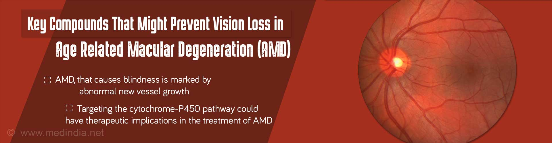 Key compounds that might prevent vision loss in age-related macular degeneration (AMD) - AMD, that cause blindness is marked by abnormal new vessel growth - targeting the cytochrome-P450 pathway could have therapeutic implications in the treatment of AMD