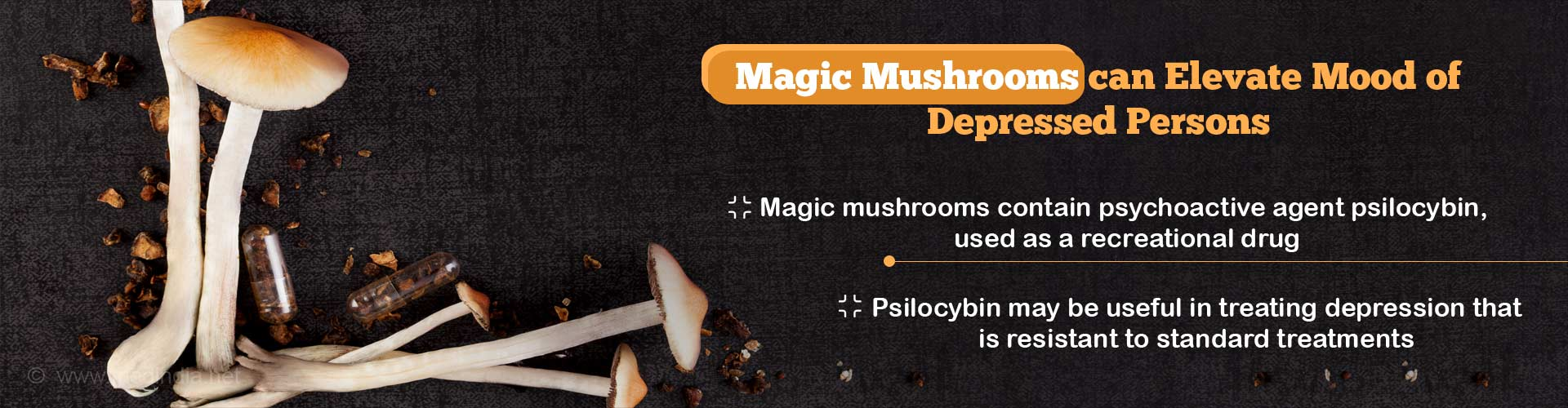 Magic Mushrooms May Help Lift Persons From Depressed Mood