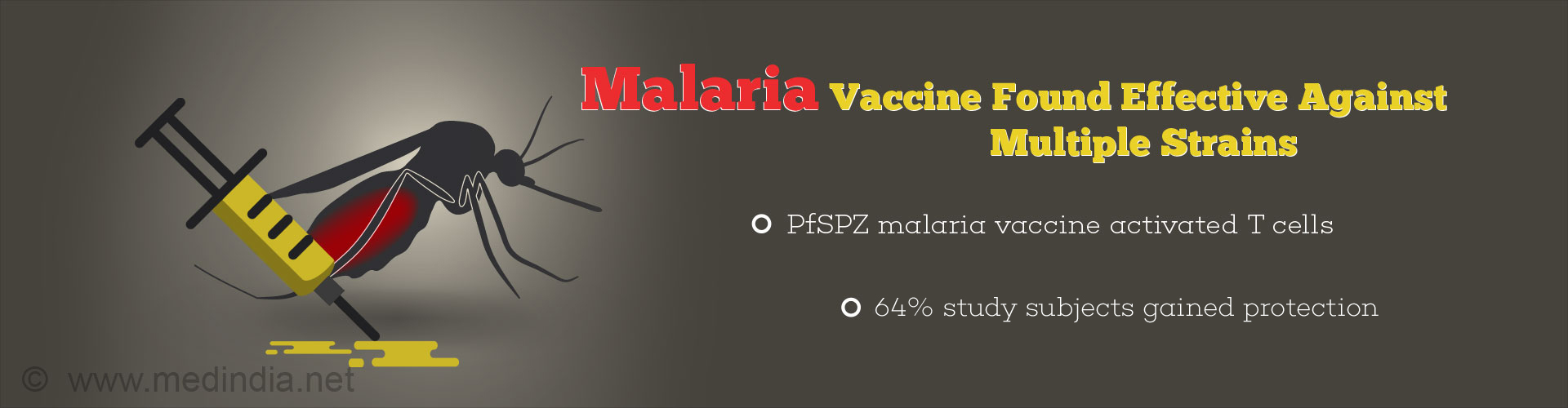 Experimental Malaria Vaccine Found Effective Against Different Strains