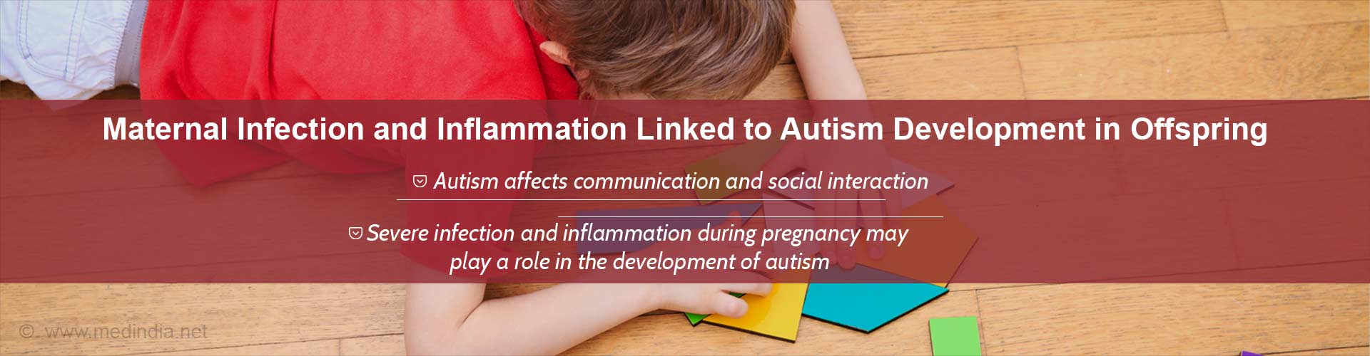 Possible Mechanisms of Autism Development Explored