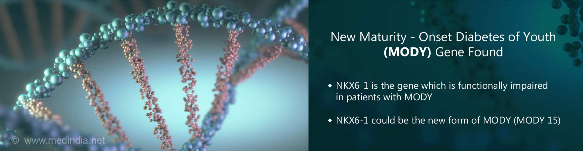 new maturity-onset diabetes of youth (MODY) gene found