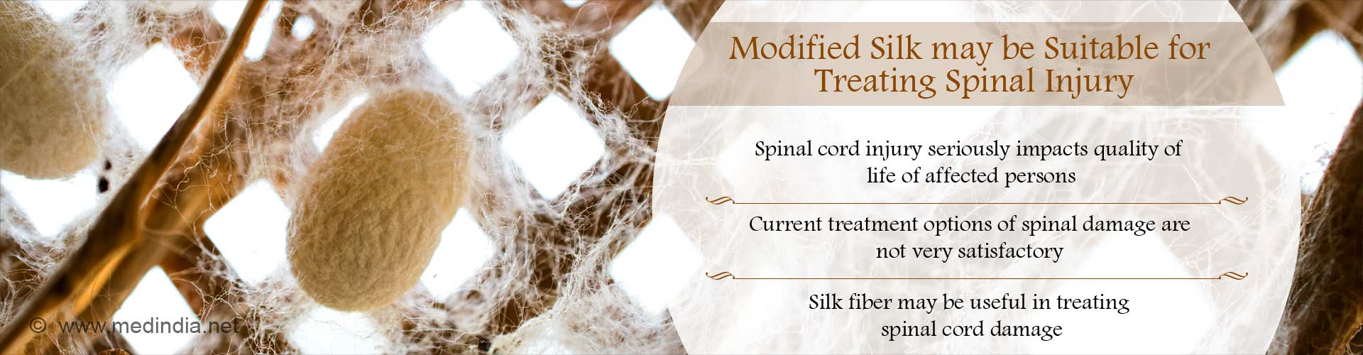 Spinal Cord Damage May Be Treated Using Silk Filament