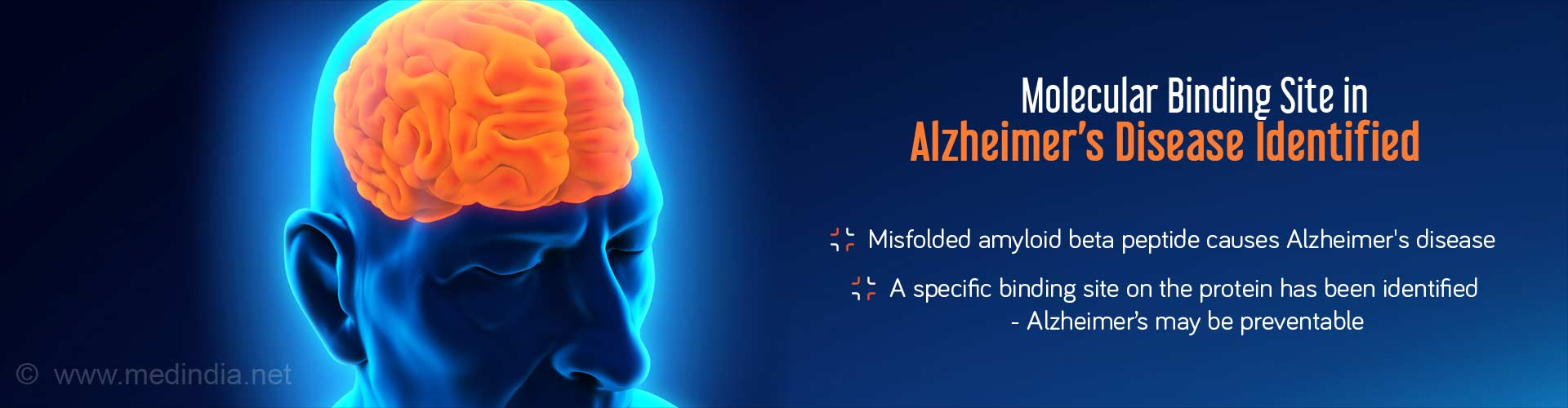 Molecular binding site in Alzheimer's disease identified - Misfolded amyloid beta peptide causes Alzheimer's disease - A specific binding site on the protein has been identified - Alzheimer's may be prevented