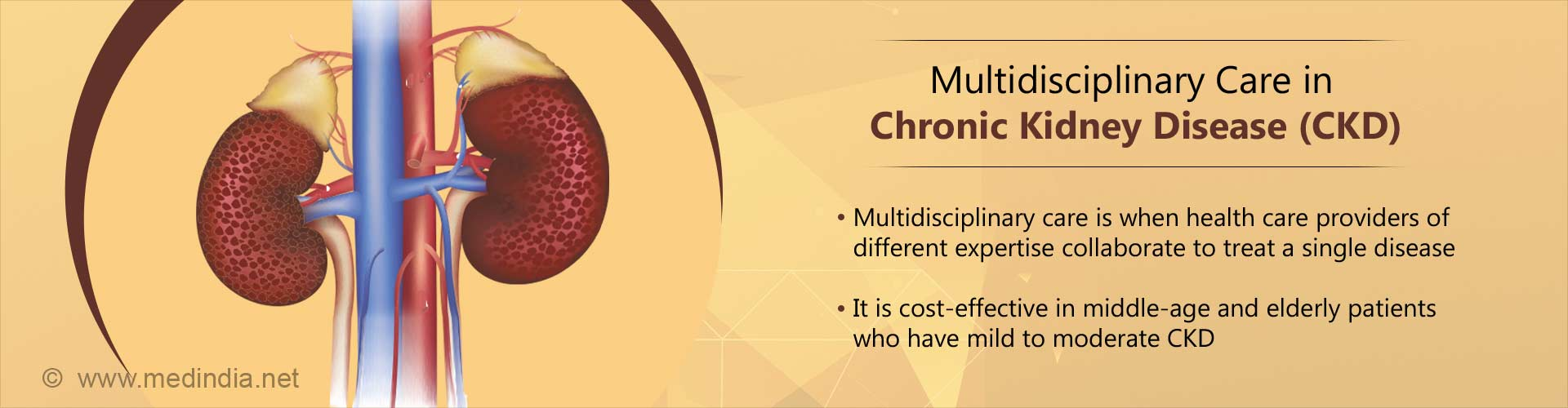 Multidisciplinary Care: Cost-effective for Chronic Kidney Disease Patients