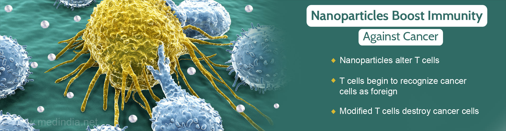 Nanoparticles Hold The Key to Boost Immune Cells Against Cancer