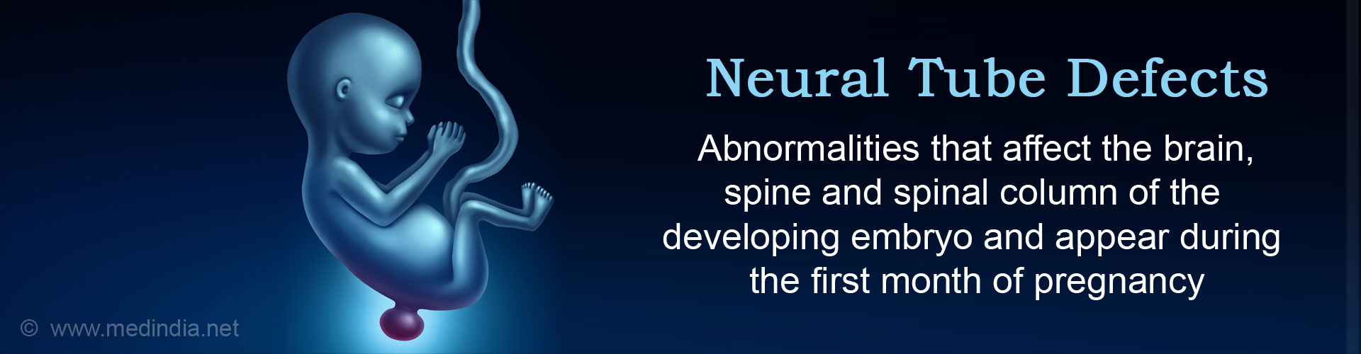 Neural Tube Defects: Abnormalities that affect the brain, spine and spinal column of the developing embryo and appear during the first month of pregnancy