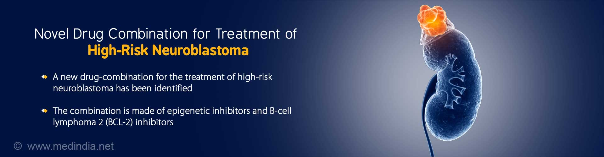 Novel Drug Combination for High-Risk Neuroblastoma. A new drug-combination for the treatment of high-risk neuroblastoma has been identified. The combination is made of epigenetic inhibitors and B-cell lymphoma 2 (BCL-2) inhibitors.