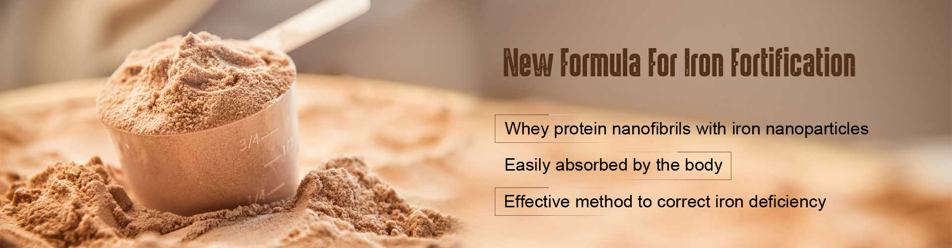 new formula for iron fortification - whey protein nano-fibrils with iron nano particles - easily absorbed by the body - effective method to correct iron deficiency