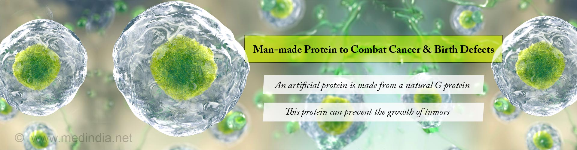 man-made protein to combat cancer & birth defects