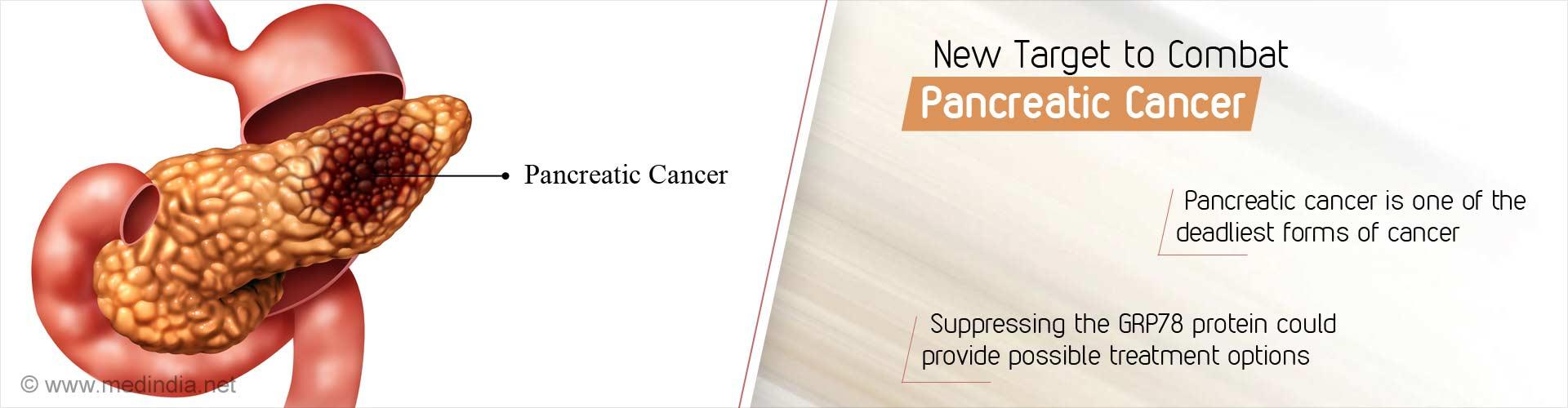Promising Pancreatic Cancer Target Identified