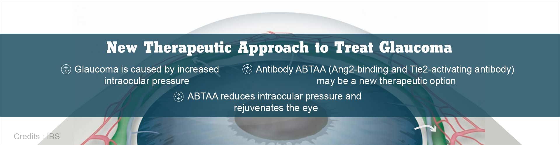 Glaucoma: Antibody Treatment may Reduce Intraocular Pressure