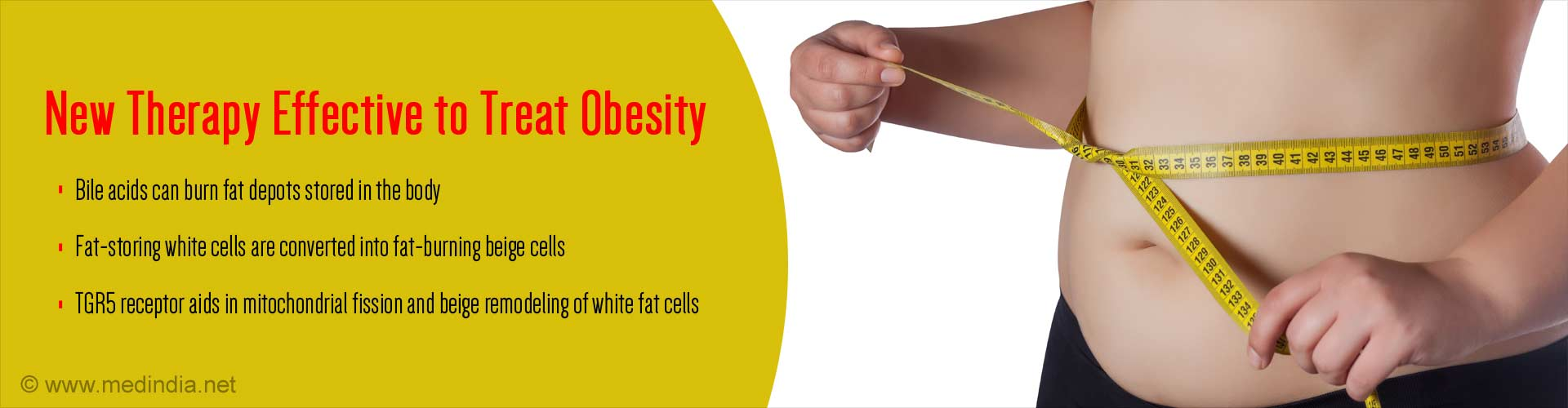 Bile Acids can Help Treat Obesity
