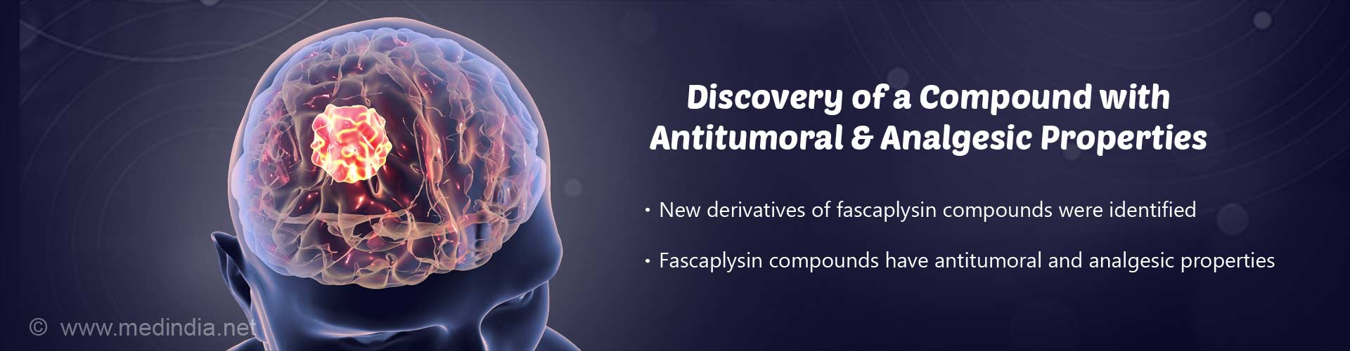 discovery of a compound with antitumoral & analgesic properties