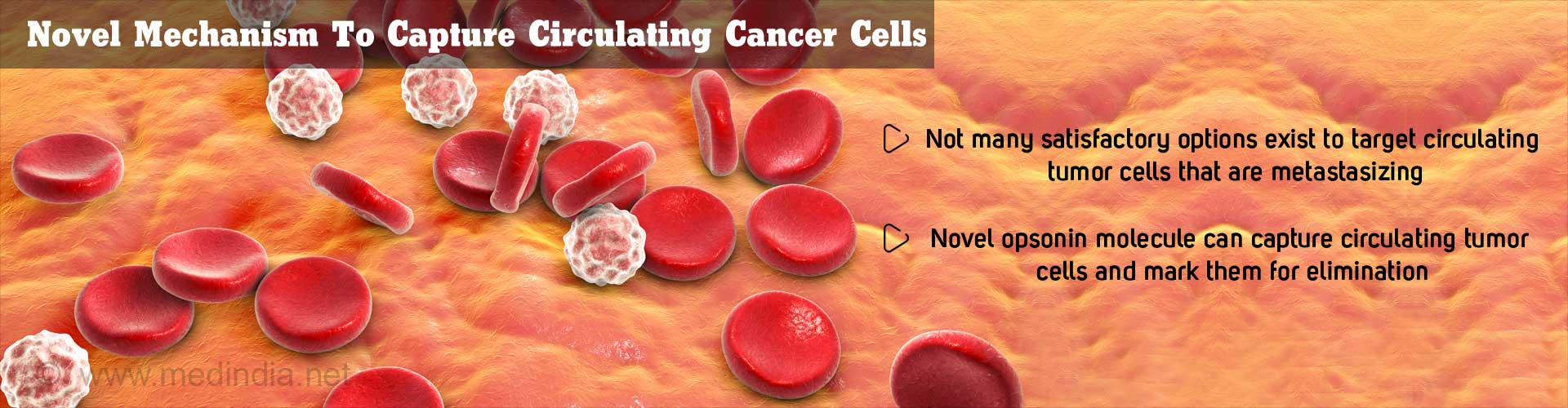 novel mechanism to capture circulating cancer cells