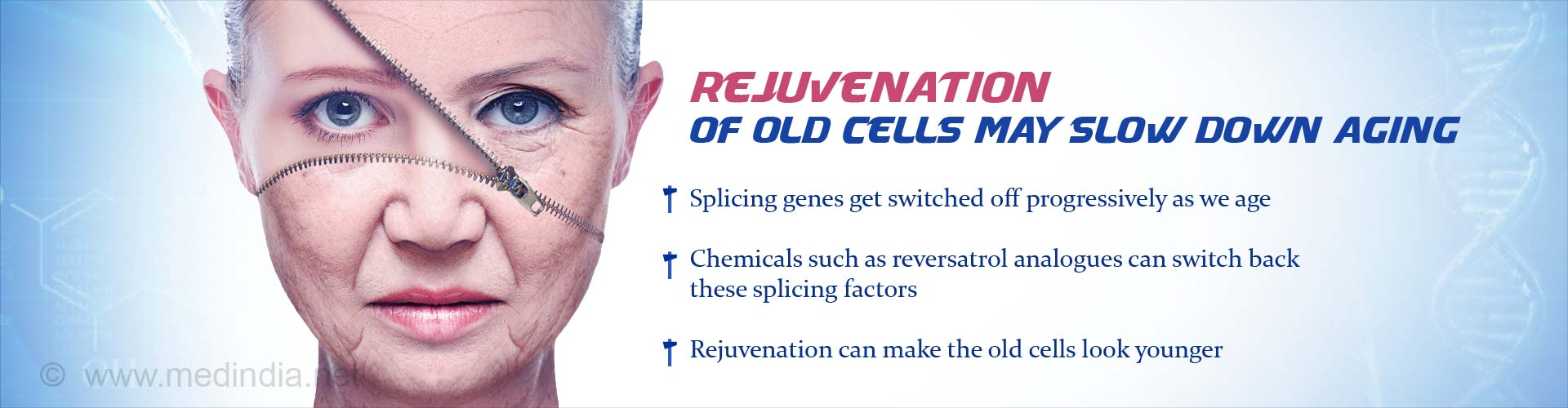 rejuvenation of old cells may slow down aging
