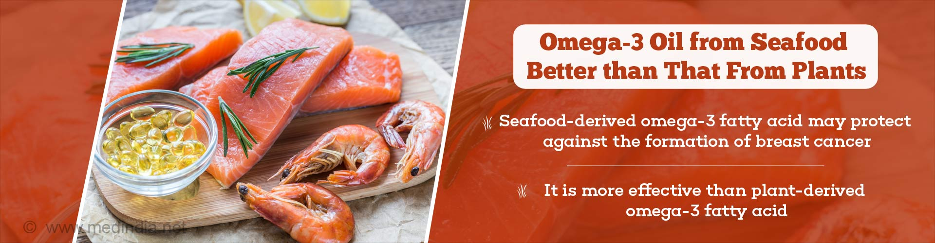 Omega-3 Oil from Seafood Better Than That From Plants