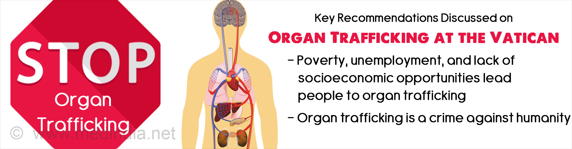 Key Recommendations Discussed on Organ Trafficking at the Vatican