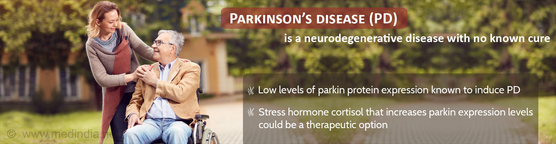 Parkinson's Disease (PD) is a neurodegenerative disease with no known cure